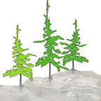 Holding Space Logo Trees